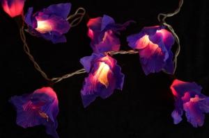 Lotus LED Lichterkette 20 Stk. - lila