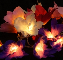 Lotus blossoms LED light chain 20 pcs. - blossom colorful